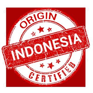 ORGIN INDONESIA